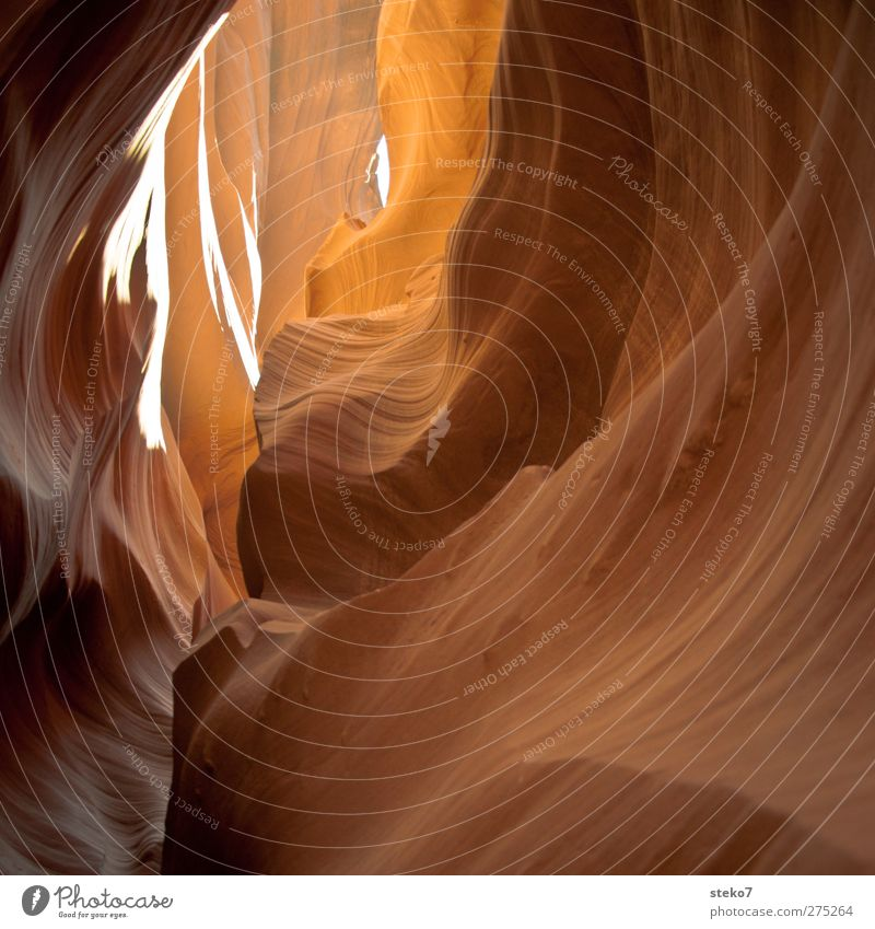 Yellow Rock Gold Round Canyon Corridor Tunnel vision Undulation Antelope Canyon