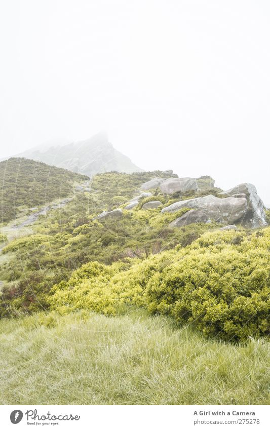 further weather prospects Environment Nature Landscape Plant Elements Spring Summer Weather Bad weather Fog Hill Rock Mountain Peak Natural Wild Green England