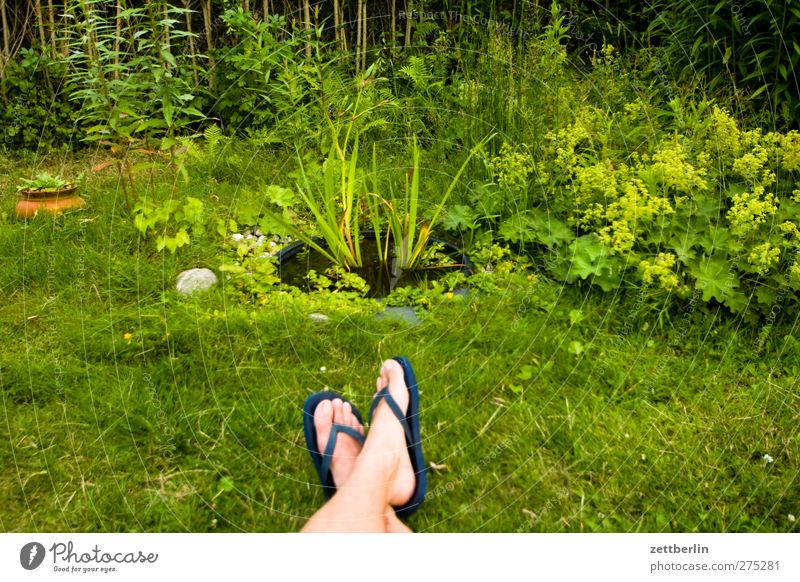 Nature Man Summer Plant Calm Adults Relaxation Environment Grass Garden Legs Feet Contentment Sit Leisure and hobbies Wellness