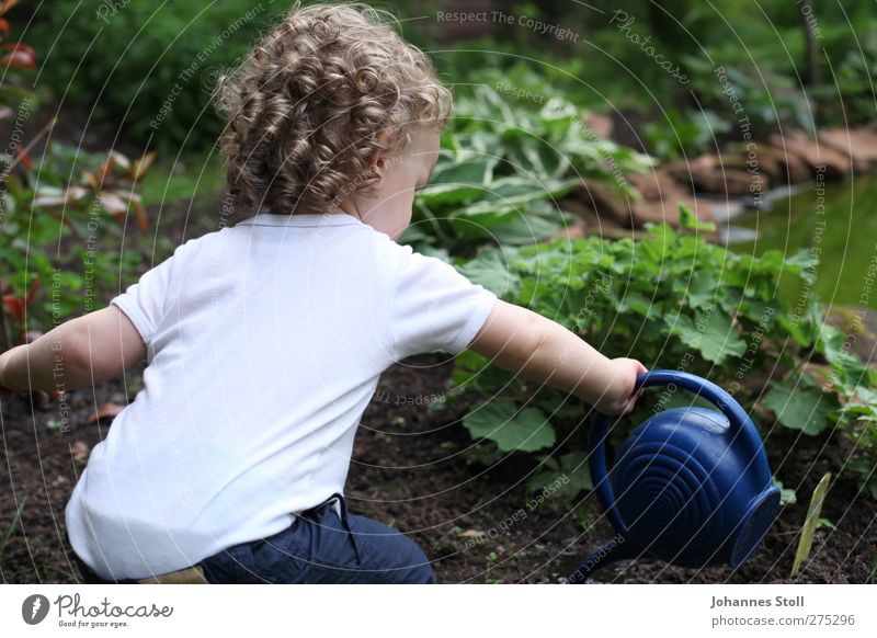 flower child Garden Parenting Kindergarten Child Gardening Toddler Boy (child) Hair and hairstyles 1 Human being 1 - 3 years Nature Plant Agricultural crop