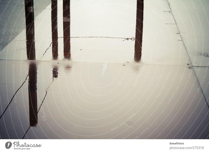 Black Gray Wet Places Rainwater Pole