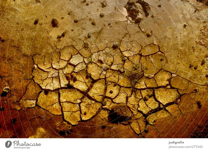 Nature Environment Brown Earth Natural Elements Dry Crack & Rip & Tear Iceland