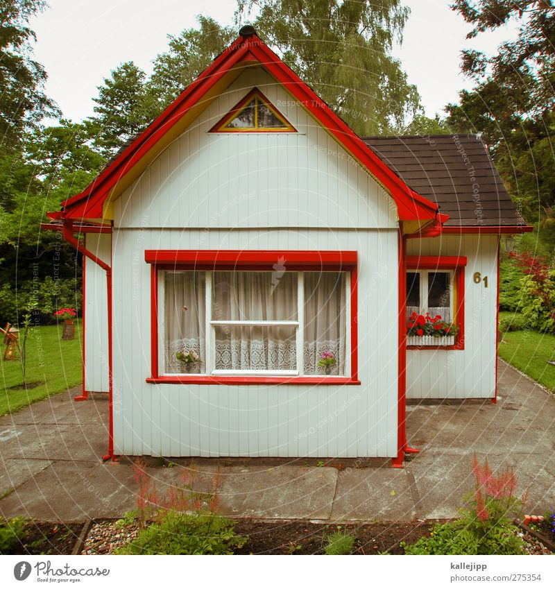 Summer Flower House (Residential Structure) Window Small Garden Facade Leisure and hobbies Tourism Authentic Living or residing Lifestyle Roof Uniqueness