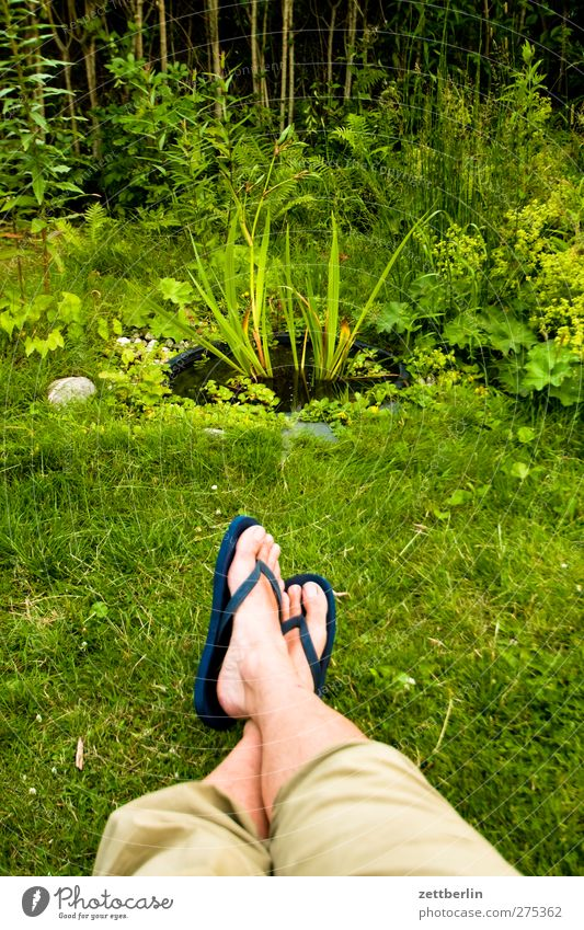 Nature Man Summer Flower Leaf Calm Adults Relaxation Environment Life Emotions Garden Legs Feet Weather Contentment