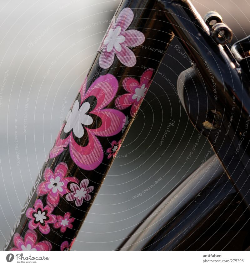 beautiful bicycle Leisure and hobbies Cycling Bicycle Label Flowery pattern Metal Steel Rust Plastic Hip & trendy Beautiful Uniqueness Positive Pink Black Joy