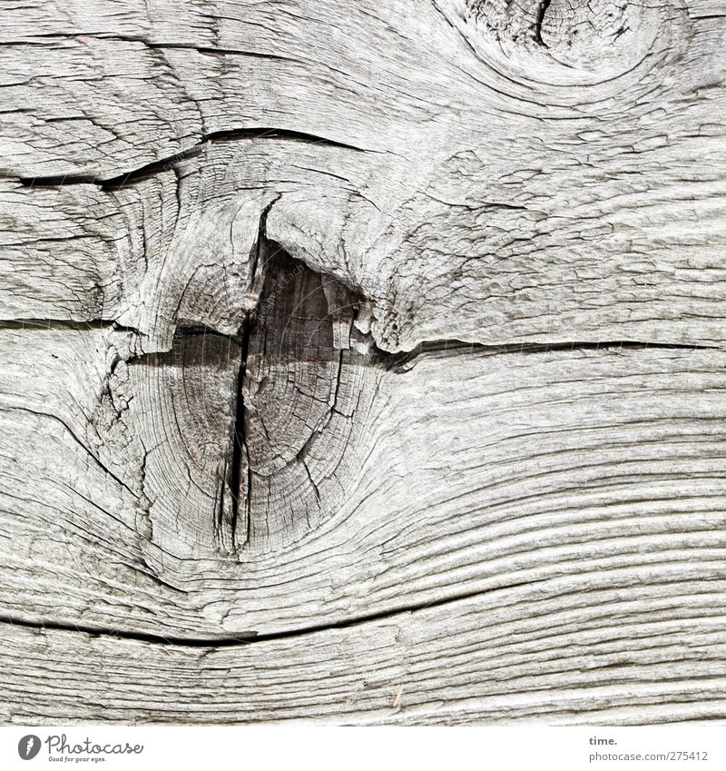 Old Life Wood Authentic Transience Crack & Rip & Tear Weathered Original Knothole