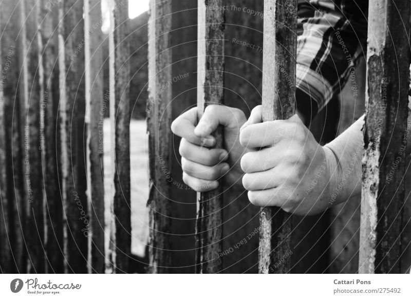 Human being Youth (Young adults) Hand Adults Dark Life Young man Closed Masculine Fingers To hold on End Gate Shirt Border Rust