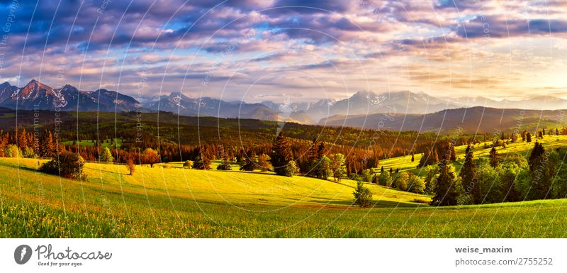 Tatra mountains panorama. Beautiful valley and cloudy sky Sky Vacation & Travel Nature Summer Blue Green Landscape Tree Clouds Forest Mountain Spring Natural