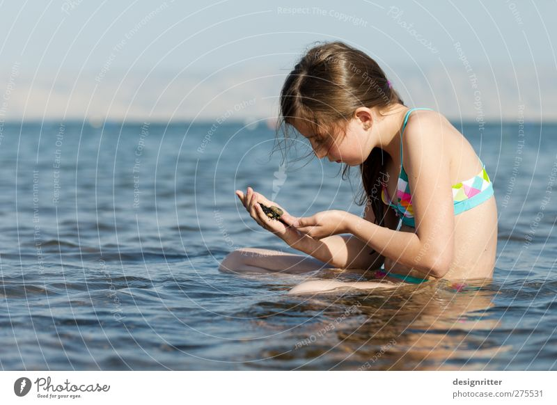 Paradise found Leisure and hobbies Swimming & Bathing Vacation & Travel Tourism Far-off places Summer Summer vacation Sun Ocean Waves Human being Girl 1