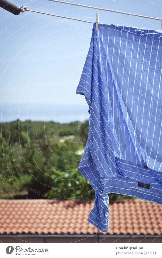 Make blue Sky Ocean Roof Fashion Shirt Cloth Hang Fresh Blue Clothesline Dry Striped Vacation & Travel Laundry Washing Colour photo Subdued colour Exterior shot