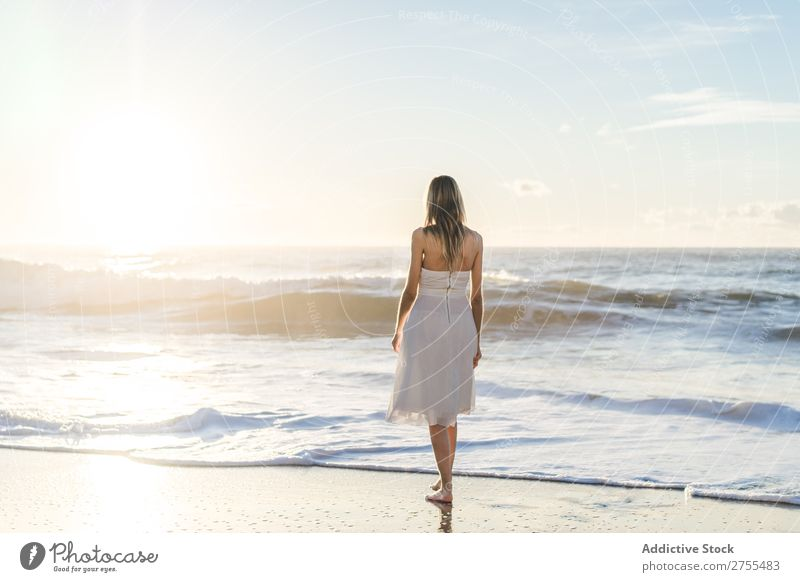 Wonderful tender bride in sunlight Woman Bride Happiness Beach Portrait photograph Cheerful human face seaside Dress in love seascape Blonde Engagement Sun
