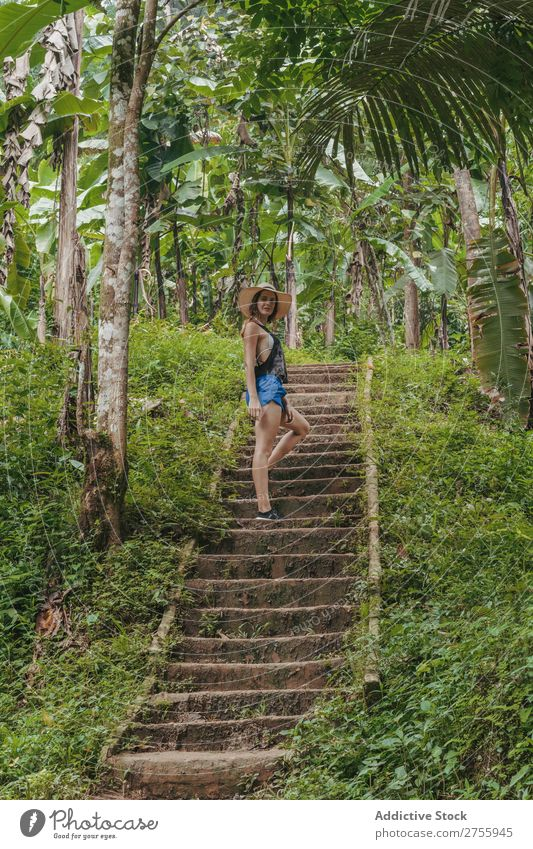 Woman climbing stairs in the forest Stairs Lanes & trails Nature Forest Tropical Virgin forest Green Tree