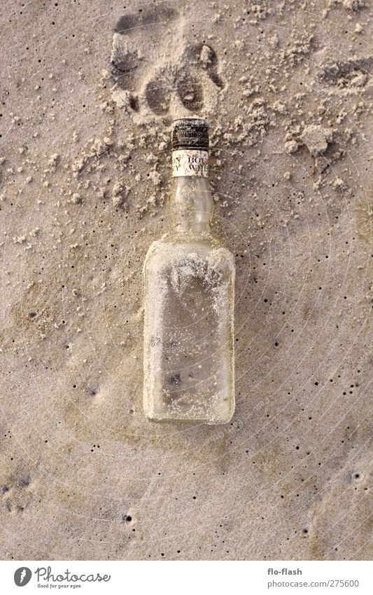 golden whiskey & big dogs Food Beverage Alcoholic drinks Spirits Whiskey Bourbon Bottle Sand Coast Beach Bay North Sea Island Glass Authentic Colour photo