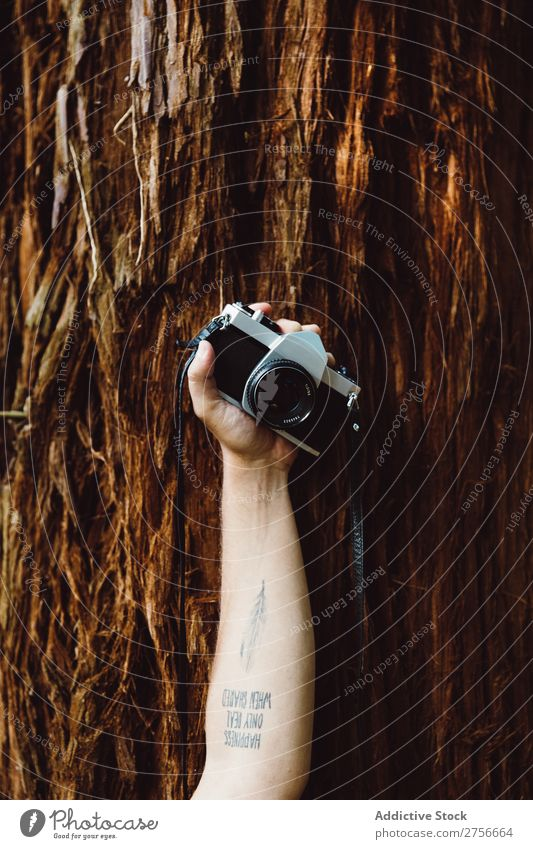 Hand with camera in forest Tourist Forest Camera Nature Vacation & Travel Adventure Mountain Lifestyle