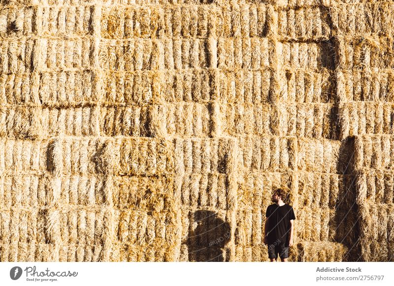 Man in front of wall of haystacks Wall (building) Hay Human being Background picture Haystack bunch Dry Straw Agriculture Bale of straw Nature Wheat Yellow