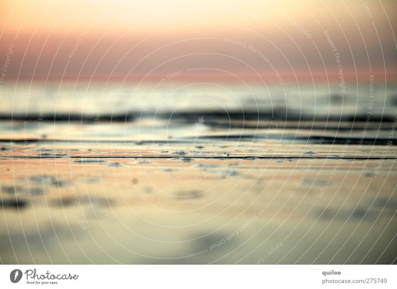 vastness Water Sky Coast Beach Baltic Sea Fluid Free Infinity Wet Brown Gold Silver Calm Curiosity Contentment Relaxation Freedom Horizon Ease Moody