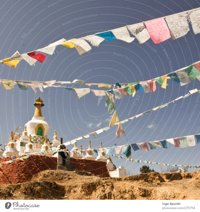 With the wind China Yunnan Temple Adventure Relaxation Religion and faith Tourism Dream Contentment Buddhism Tibet Flag Prayer flags Colour photo Exterior shot