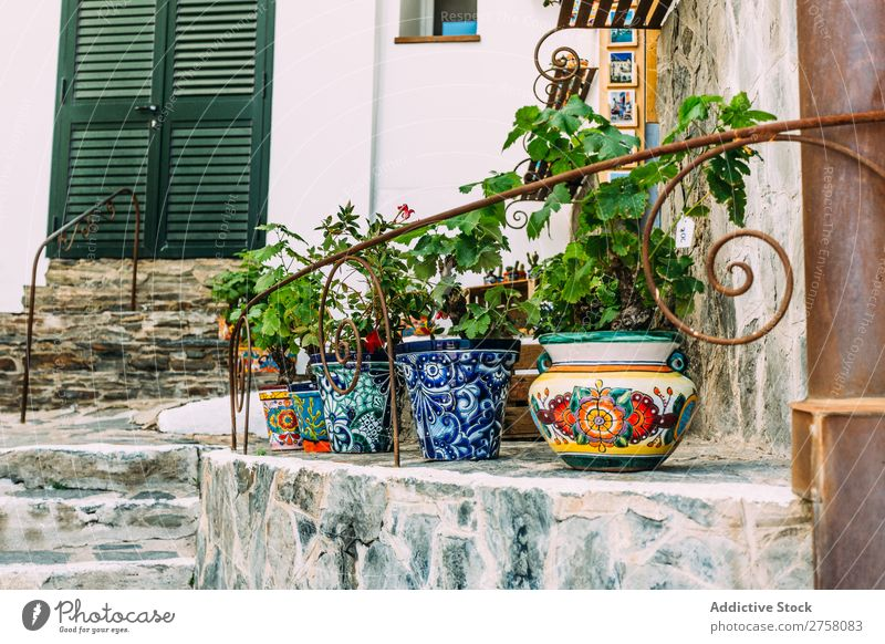 Rustic flower pots in Cadaques, Spain mediterranean house garden decoration spain beautiful wall street white village building europe background home exterior