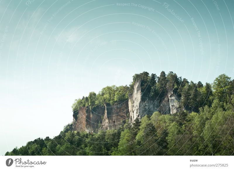 Beautiful Saxony Vacation & Travel Tourism Freedom Mountain Environment Nature Landscape Plant Elements Sky Cloudless sky Spring Climate Beautiful weather Tree