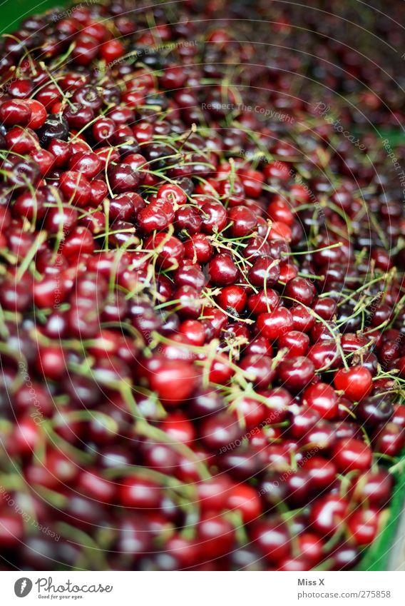 10 000 cherries Food Fruit Nutrition Organic produce Vegetarian diet Fresh Healthy Small Delicious Sweet Red Farmer's market Harvest Cherry Sell Fruit seller