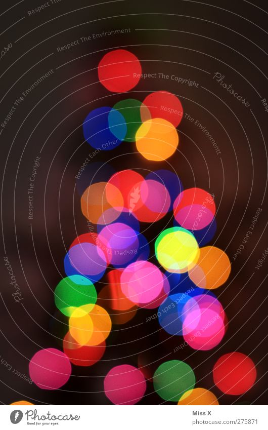 out of season Christmas & Advent Illuminate Multicoloured Christmas decoration Christmas fairy lights Christmas tree Fairy lights Sea of light Blur Colour photo