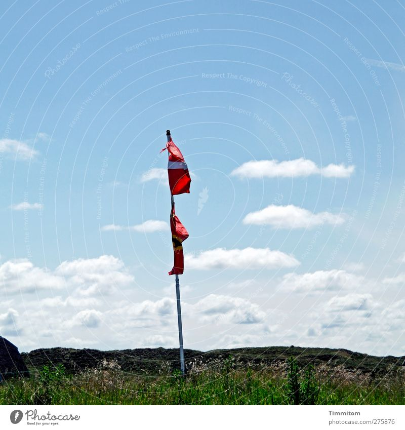 mødested Vacation & Travel Environment Nature Plant Sky Clouds Summer Beautiful weather Grass Hill Dune Denmark Hang Blue Green Red White Joy Flag Flagpole Blow