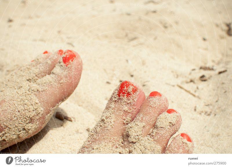 Sand in the shoot Skin Nail polish Vacation & Travel Summer Summer vacation Sunbathing Beach Human being Feminine Woman Adults Feet Toes Toenail 1