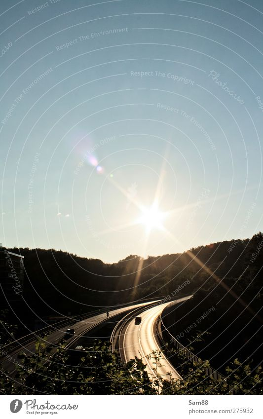 Drive into the sun Nature Landscape Sun Summer Tree Forest Manmade structures Traffic infrastructure Motoring Street Highway Bridge Vehicle Car Hot Bright