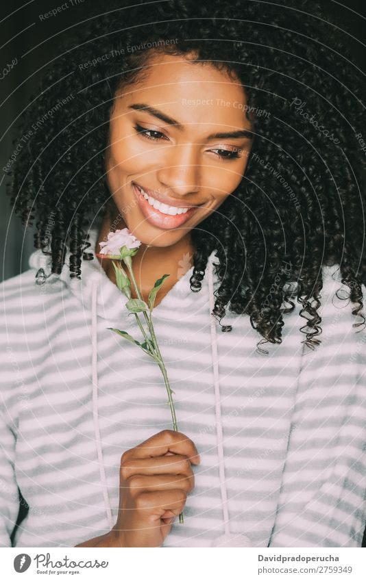 close up of a pretty black woman with curly hair smiling with a rose flower sit on bed looking away Woman Bed Portrait photograph Close-up Lie (Untruth) Black
