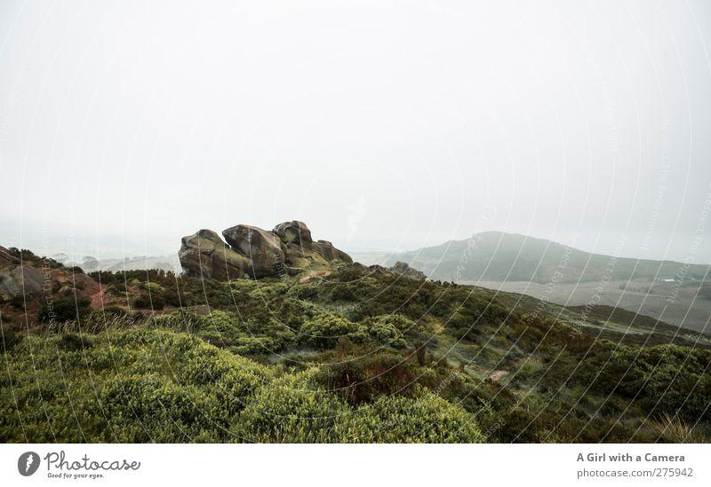 your imagination Environment Nature Landscape Plant Elements Sky Clouds Horizon Spring Climate Climate change Weather Bad weather Fog Hill Rock Mountain Peak