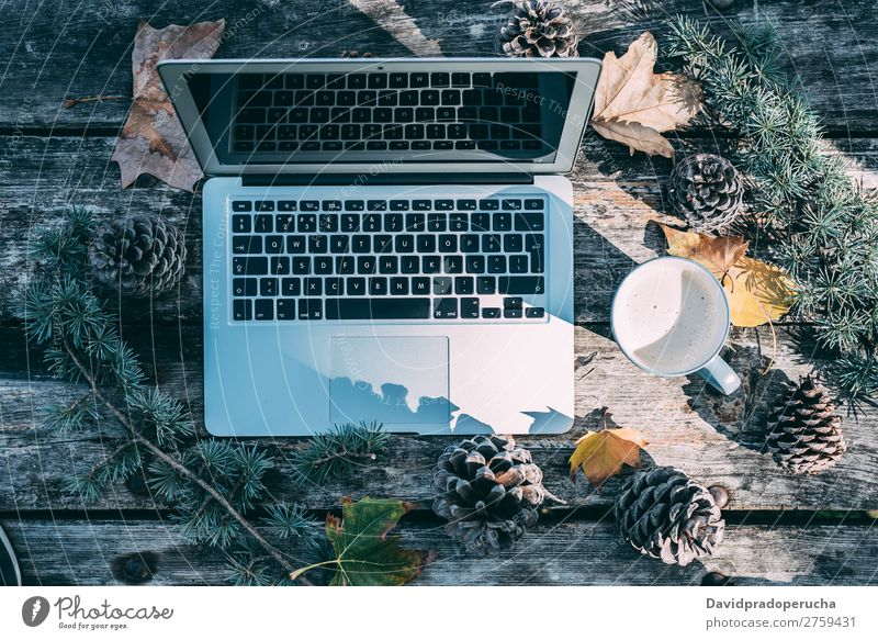 Computer on a wooden table with coffee and pines outdoor Christmas & Advent Notebook Technology Gift Coffee Hot Drinking