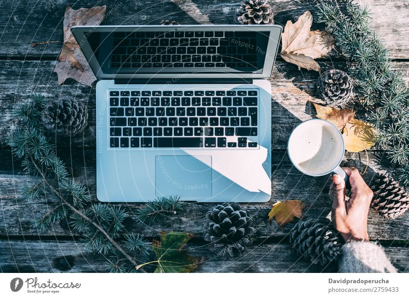 Computer on a wooden table with coffee and pines outdoor Christmas & Advent Notebook Technology Work and employment Hand Arm Observe Gift Coffee Hot Drinking
