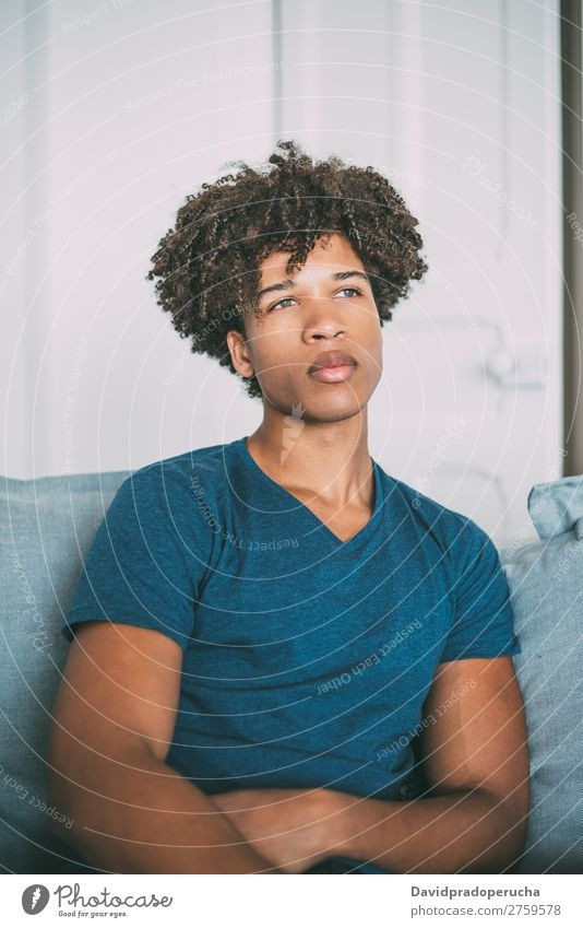 Portrait of a young thoughtful mixed race man sitting in the sofa Man Black Youth (Young adults) Portrait photograph Human being Mixed Racing sports American