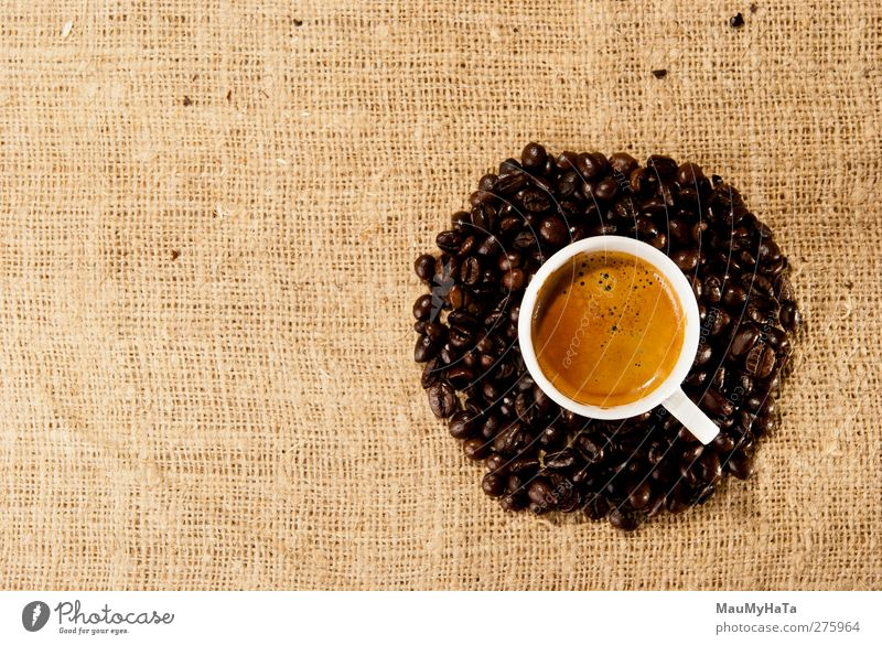 Coffee Food Grain Chocolate Beverage Drinking Hot drink Espresso Lifestyle Elegant Style Design Exotic Relaxation Emotions Optimism Might Determination Romance