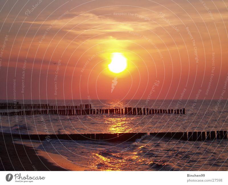 Sun goes to sleep Ocean Beach Sunset Kühlungsborn Water Baltic Sea Evening Vantage point Sand