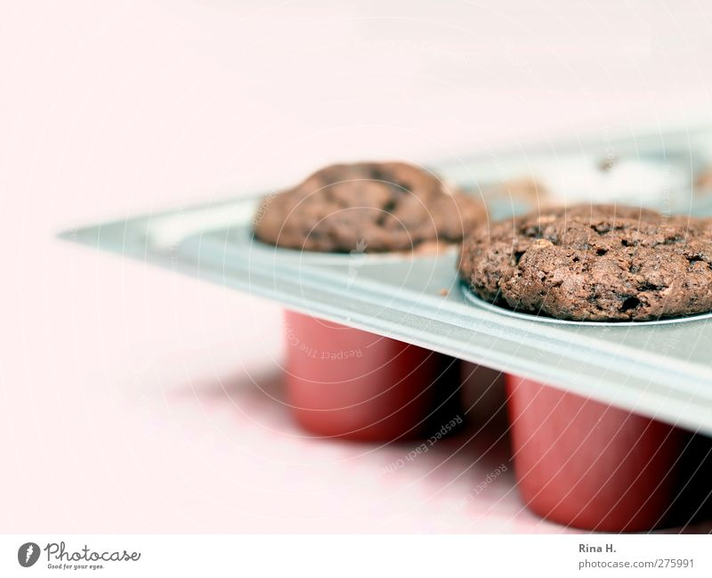 In the bakery Dough Baked goods Cake Muffin Delicious Sweet Baking tin Chocolate Colour photo Deserted Shallow depth of field