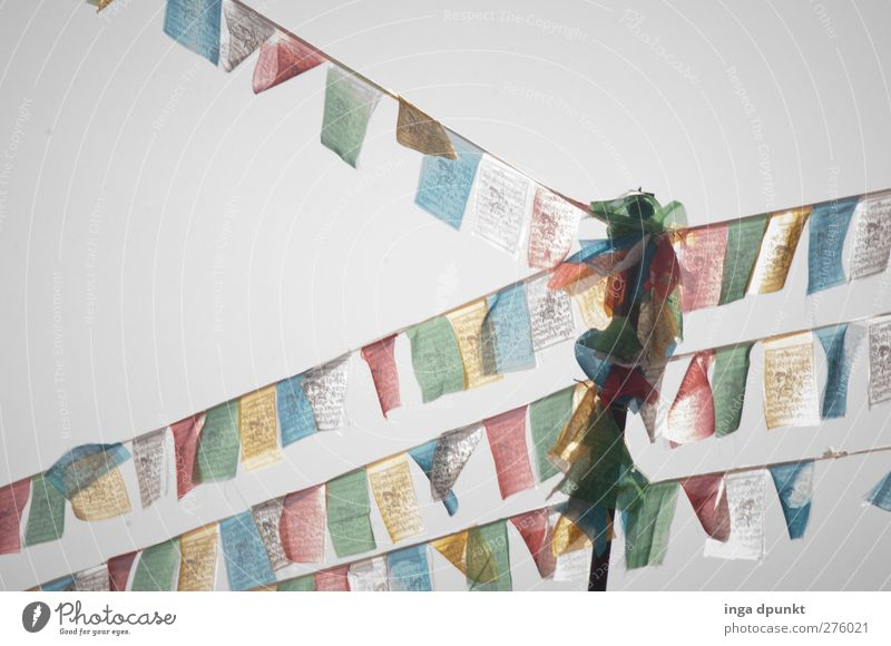 in the wind China Asia Yunnan Religion and faith Buddhism Tibet Friendliness Happiness Multicoloured Wind Heaven Meditation Flag Flagpole Colour photo