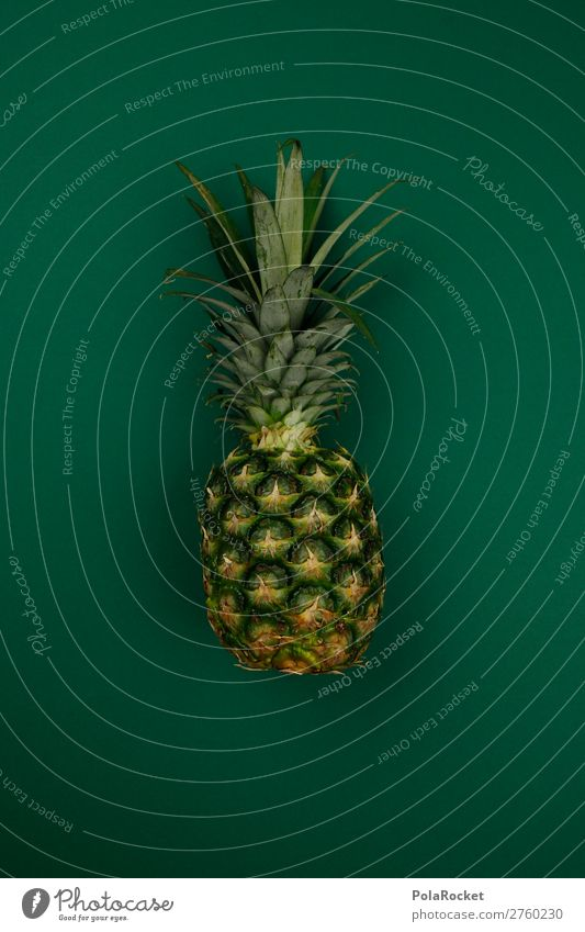 #A# Exotic Green Art Work of art Esthetic Pineapple Ananas leaves Pineaple platation Tropical fruits Fruit Fruity Fertile Healthy Eating Vegan diet