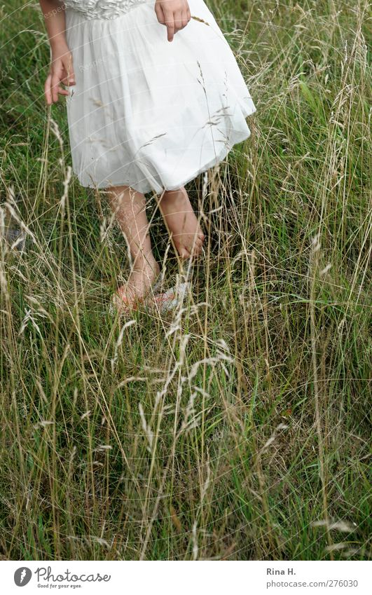 Where's the grasshopper? Girl 1 Human being 3 - 8 years Child Infancy Nature Summer Grass Meadow Dress Flip-flops Natural Green Colour photo Exterior shot