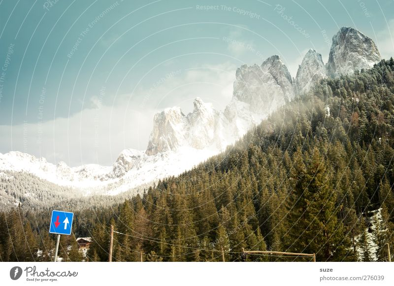 up and down Environment Nature Landscape Plant Elements Air Sky Spring Climate Beautiful weather Tree Forest Alps Mountain Peak Snowcapped peak Road sign Sign