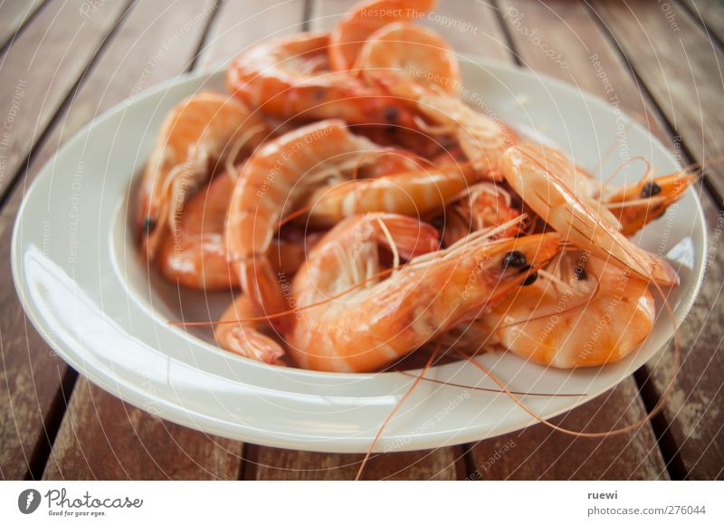 13,99 a kilo Food Seafood langustini Nutrition Delicacy Plate Animal Dead animal Crawfish Simple Fresh Healthy Orange Red White Appetite To enjoy Cooking