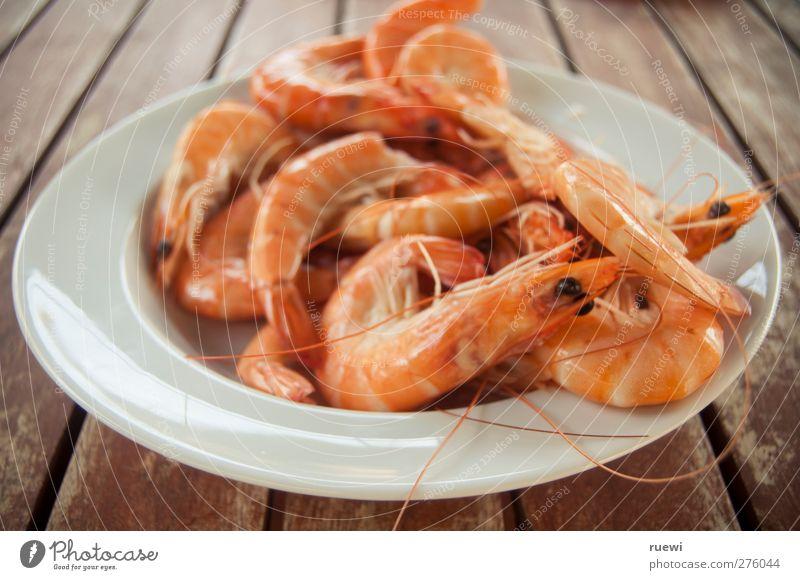 White Red Animal Eyes Healthy Orange Food Fresh Nutrition Cooking & Baking Simple To enjoy Appetite Plate Mediterranean Feeler