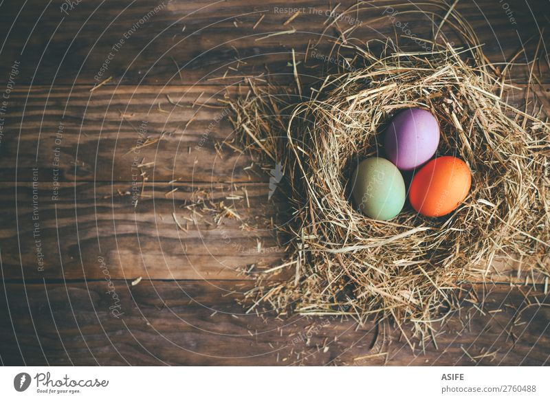 Easter eggs in hay nest on a rustic wooden background Joy Happy Hunting Decoration Feasts & Celebrations Grass Wood Dark Funny Green Colour Tradition Egg