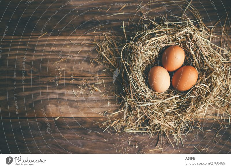 Fresh chicken eggs in the nest on a rustic background Nutrition Feasts & Celebrations Easter Group Grass Wood Above Brown Egg hen Chicken Nest straw Rustic Hay