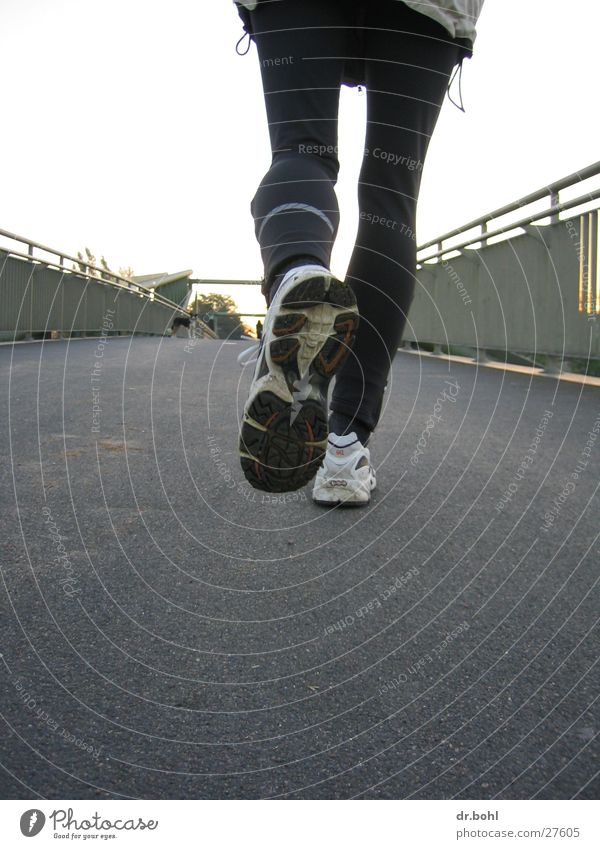 Sports Movement Dog Footwear Walking Running Bridge Leisure and hobbies Jogging Track and Field