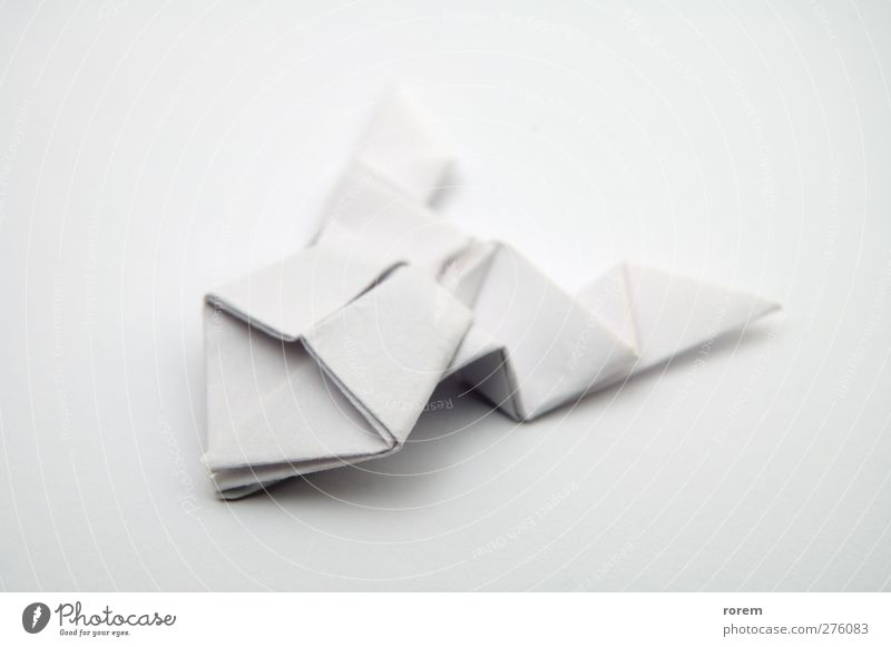 paper frog Leisure and hobbies Handcrafts Paper Toys White Folded Origami Close-up Deserted Neutral Background Shallow depth of field Isolated Image