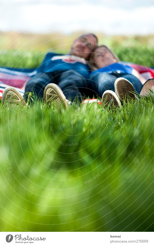 Human being Youth (Young adults) Green Summer Sun Adults Relaxation Love Feminine Life Grass Young woman Head Legs Couple Feet