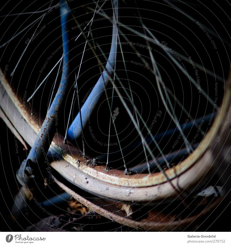 Blue Old Loneliness Black Dark Gray Sadness Brown Contentment Bicycle Leisure and hobbies Dirty Trip Transience End Longing
