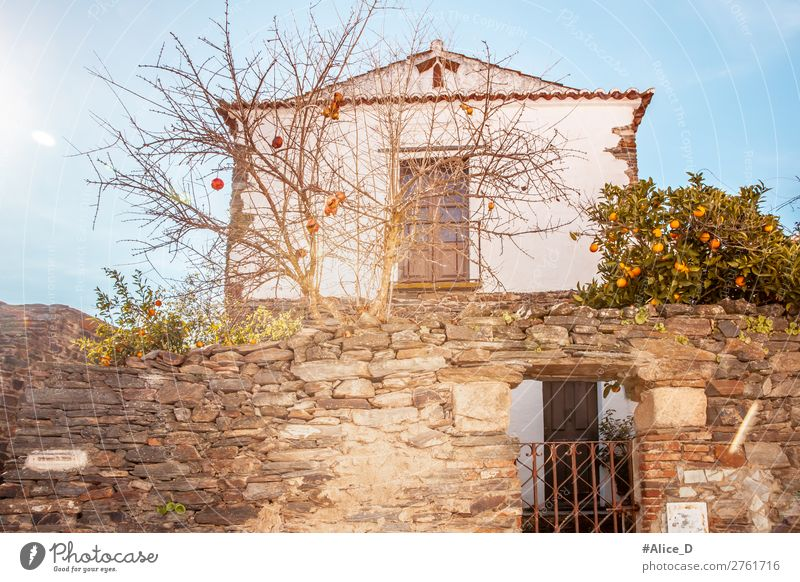 Medieval village Monsaraz in the Alentejo Portugal Vacation & Travel Europe Village Small Town Old town House (Residential Structure) Building Architecture