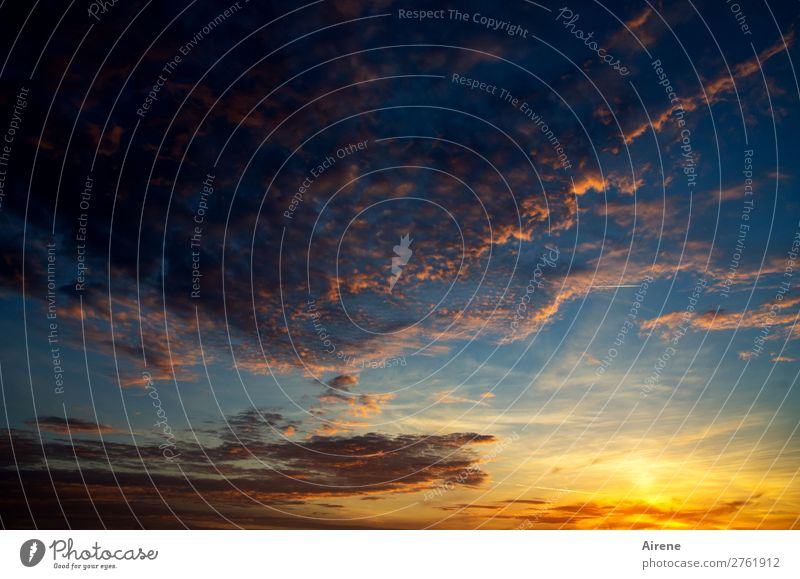 Wanderlust with the clouds pulling Nature Sky Clouds Night sky Horizon Sunrise Sunset Beautiful weather Flying Infinity Kitsch Natural Blue Orange Pink Moody
